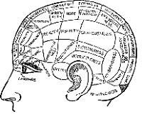 脳梗塞 高次脳機能障害